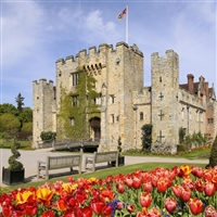 Hever Castle Tulip Festival