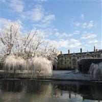 Cambridge - Christmas Market/Shopping