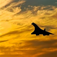 The Concorde Experience & Lunch