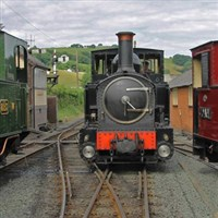 Llanfair Light Railway & Lunch