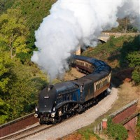 Pickering/Goathland/ North Yorkshire Moors Railway