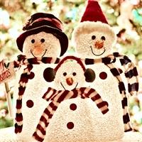 Yorkshire Delight - Winter Wonderland