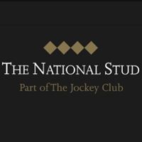Newmarket - National Stud
